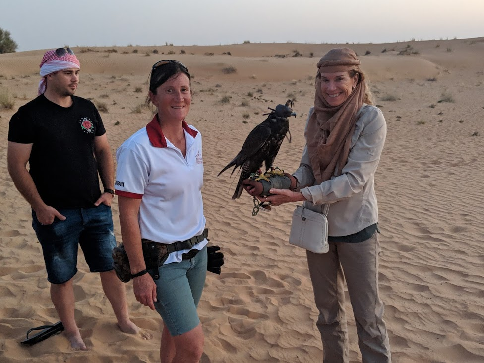 Falconry activity on Heritage Desert Safari Dubai